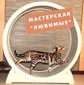 sponsor-show-masterskaya-lubimue